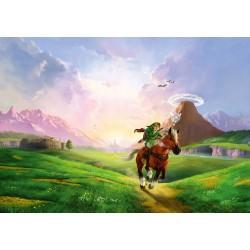 Legend of Zelda Puzzle...